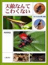 【バーゲン本】天敵なんてこわくないー虫たちの生き残り戦略 [ 西田 隆義 ]