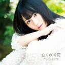 白く咲く花 (期間限定盤 CD+DVD) [ 小倉唯 ]
