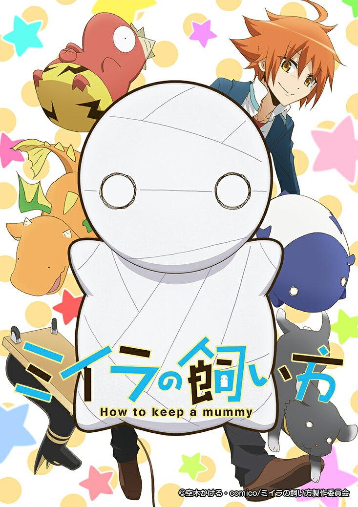 アニメ, その他 TVDVD2( ) ()