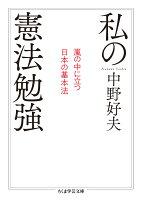 私の憲法勉強(嵐の中に立つ日本の基本法)
