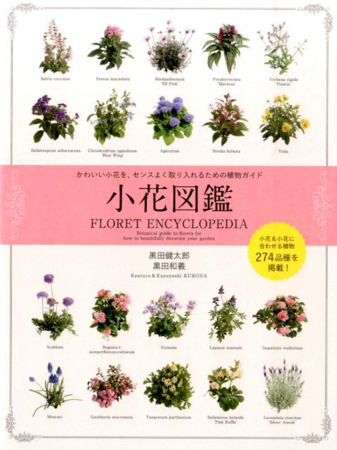 小花図鑑 かわいい小花を、センスよく取り入れるための植物ガイ [ 黒田健太郎 ]