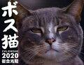ボス猫カレンダー