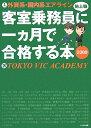 【送料無料】外資系・国内系エアライン客室乗務員(地上職)に一カ月で合格する本(2009)