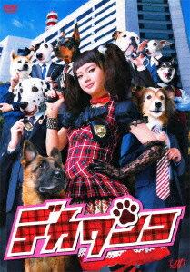 デカワンコ DVD-BOX [ 多部未華子 ]