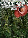 【送料無料】熱帯雨林を歩く