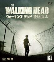 ウォーキング・デッド コンパクト DVD-BOX シーズン4