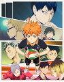 ハイキュー!!セカンドシーズン Vol.8 DVD 初回生産限定版