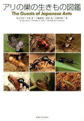【楽天ブックスならいつでも送料無料】アリの巣の生きもの図鑑 [ 丸山宗利 ]