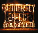 BUTTERFLY EFFECT (初回限定盤 2CD+DVD) [ ポルノグラフィティ ]