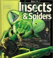 【バーゲン本】Insects&Spiders-昆虫とクモ insidersビジュアル博物館