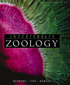 Invertebrate Zoology: A Functional Evolutionary Approach [ Edward E. Ruppert ]