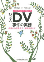 Q&A DV事件の実務の詳細を見る