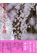 サクラ・さくら・桜 [ 隔月刊『風景写真』編集部 ]
