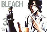 BLEACH [死神代行消失篇3]