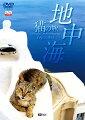 地中海・猫の旅6500キロ 【2枚組】CATS OF THE MEDITERRANEAN SEA