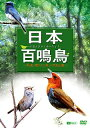 【送料無料】日本百鳴鳥/映像と鳴き声で愉しむ野鳥図鑑