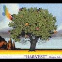 HARVEST [ Dragon Ash ]
