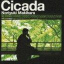 Cicada(通常盤) [ 槇原敬之 ]