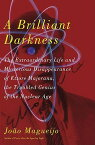 A Brilliant Darkness: The Extraordinary Life and Disappearance of Ettore Majorana, the Troubled Geni BRILLIANT DARKNESS [ Joao Magueijo ]