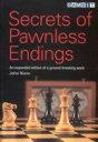 Secrets of Pawnless Endings