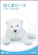 【楽天ブックスならいつでも送料無料】白くまピース ?日本初・人工哺育の全記録?