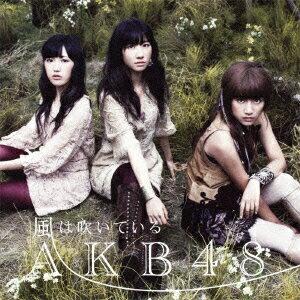 風は吹いている(Type−B)(通常盤)(DVD付)/AKB48【後払いOK】【…