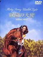 【後払いOK】【1000円以上送料無料】緑園の天使/エリザベス・テイラー