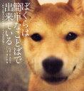 【1000円以上送料無料】ぼくらは簡単なことばで出来ている 旅する柴犬まめのポラロイド写真詩...