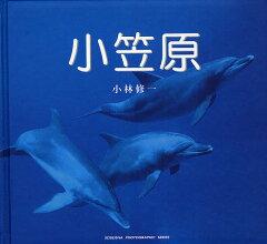 SEISEISHA PHOTOGRAPHIC SERIES【1000円以上送料無料】小笠原/小林修一