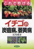 これで防げるイチゴの炭疽病、萎黄病/石川成寿【1000円以上送料無料】