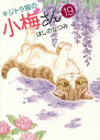 キジトラ猫の小梅さん 19/ほしのなつみ【1000円以上送料無料】
