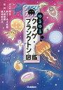 ゆるゆるクラゲ・プランクトン図鑑/和音/新江ノ島水族館/大越