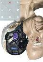 【中古】 いぬやしき(3) イブニングKC/奥浩哉(著者) 【中古】afb
