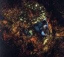 【中古】 MESSAGE FROM THE OTHER SIDE /ダミアン・ラザルス&ジ・アンシエント・ムーンズ 【中古】afb