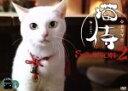 【中古】 ドラマ「猫侍 SEASON2」DVD−BOX /北村一輝,森カンナ,モト冬樹,遠藤浩二(音楽) 【中古】afb