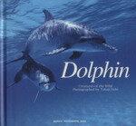 【中古】 写真集 Dolphin Creatures of the Wild /越智隆治(著者) 【中古】afb