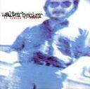 【中古】 【輸入盤】Eleven Tracks of Whack /WalterBecker 【中古】afb - ブックオフオンライン楽天市場店