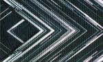 邦楽, その他  SAKANAQUARIUM 20152016NF Records launch tourLIVE at NIPPON BUDOKAN 2015 afb