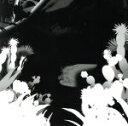 【中古】 UMA(通常盤) /水曜日のカンパネラ 【中古】afb
