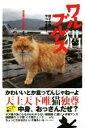 【中古】 写真集 ワル猫ブルース 悪イケ猫やってます! /日