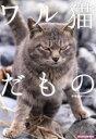 【中古】 ワル猫だもの SUN−MAGAZINE MOOK/