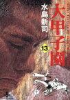 【中古】 大甲子園(文庫版)(13) 秋田文庫/水島新司(著者) 【中古】afb