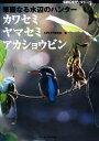 【中古】 華麗なる水辺のハンター カワセミ・ヤマセミ・アカショウビン BIRDER SPECIAL/BIRDER編集部【編】 【中古】afb