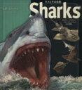 【中古】 サメとその生態 /B.マクミラン(著者),J.A.ミュージック(著者) 【中古】afb