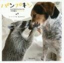 【中古】 写真集 パンプキン 犬の気持ちがわかる不思議なアラ
