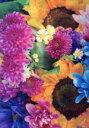 【中古】 写真集 earthly flowers,heavenly colors /蜷川実花(著者) 【中古】afb
