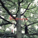 長い間〜Kiroroの森〜/Kiroro