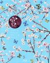 【中古】 宮〜Love in Palace BOX II(Blu−ray Disc) /ユン・ウネ,ユン・ウネ,チュ・ジフン,ソン・ジヒョ,パク・ソヒ(原作),2番目の月 【中古】afb