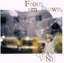 【中古】 From a smalltown(初回限定盤)(DVD付) /GRAPEVINE 【中古】afb