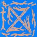 【中古】 BLUE BLOOD SPECIAL EDITION /X JAPAN 【中古】afb